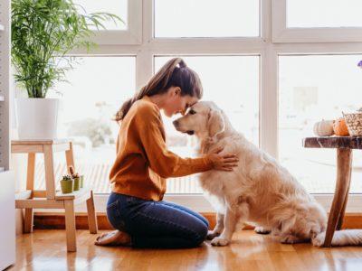 III. fejezet: A kutya táplálása és viselkedése