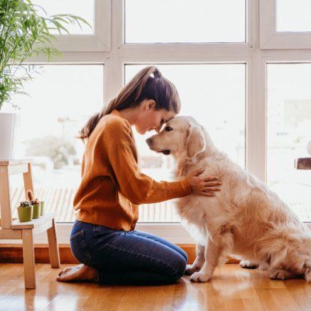 III. fejezet: A kutya táplálása